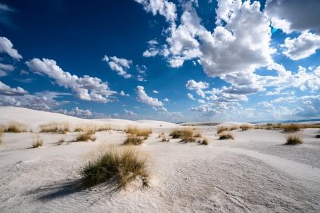 white sands 13